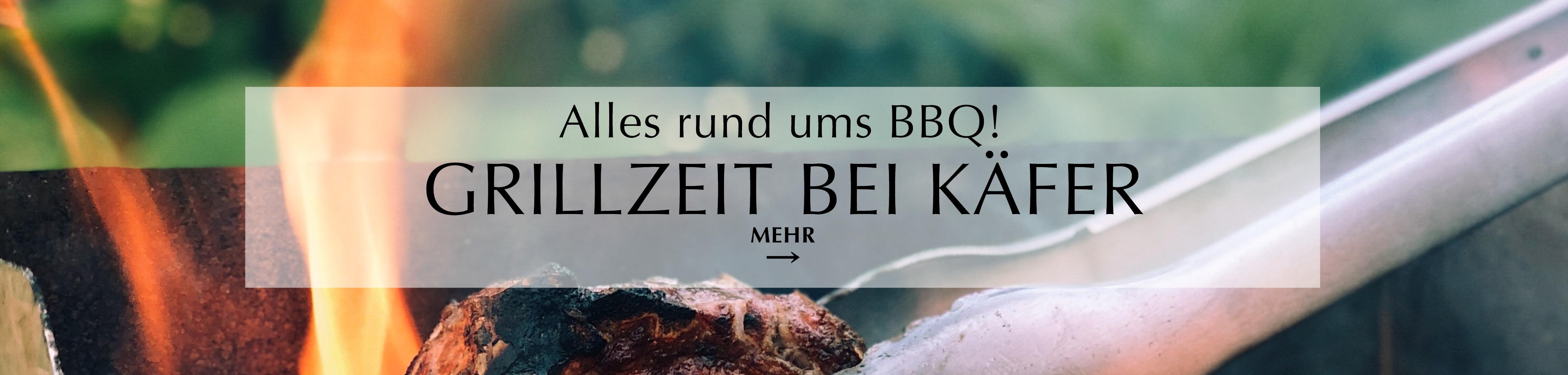 BBQ bei Käfer