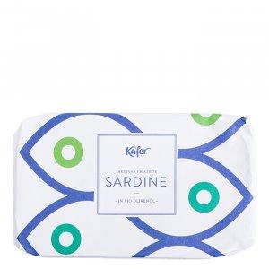Käfer Sardine