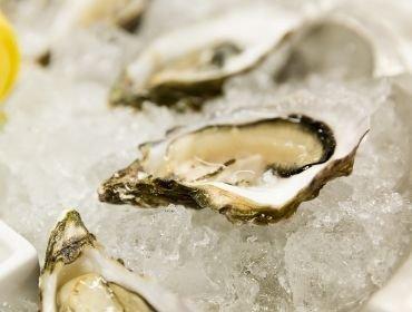 Austern – Schätze aus dem Meer